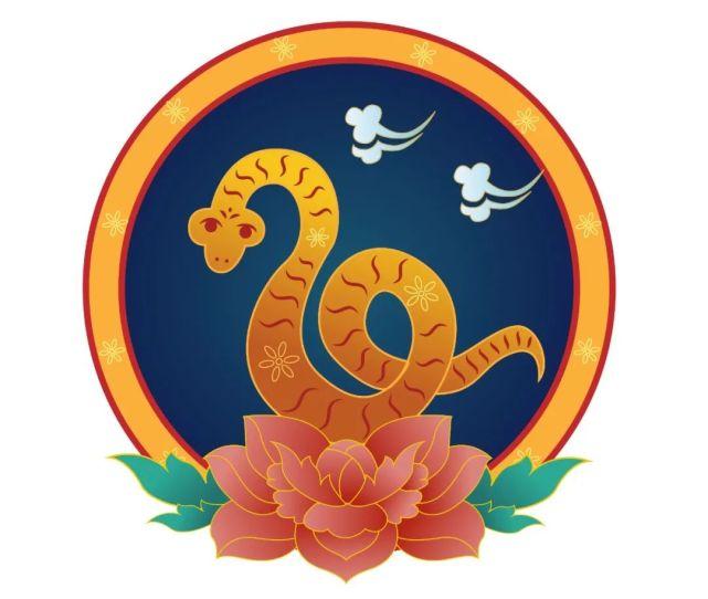 属蛇的人五行属什么运势好